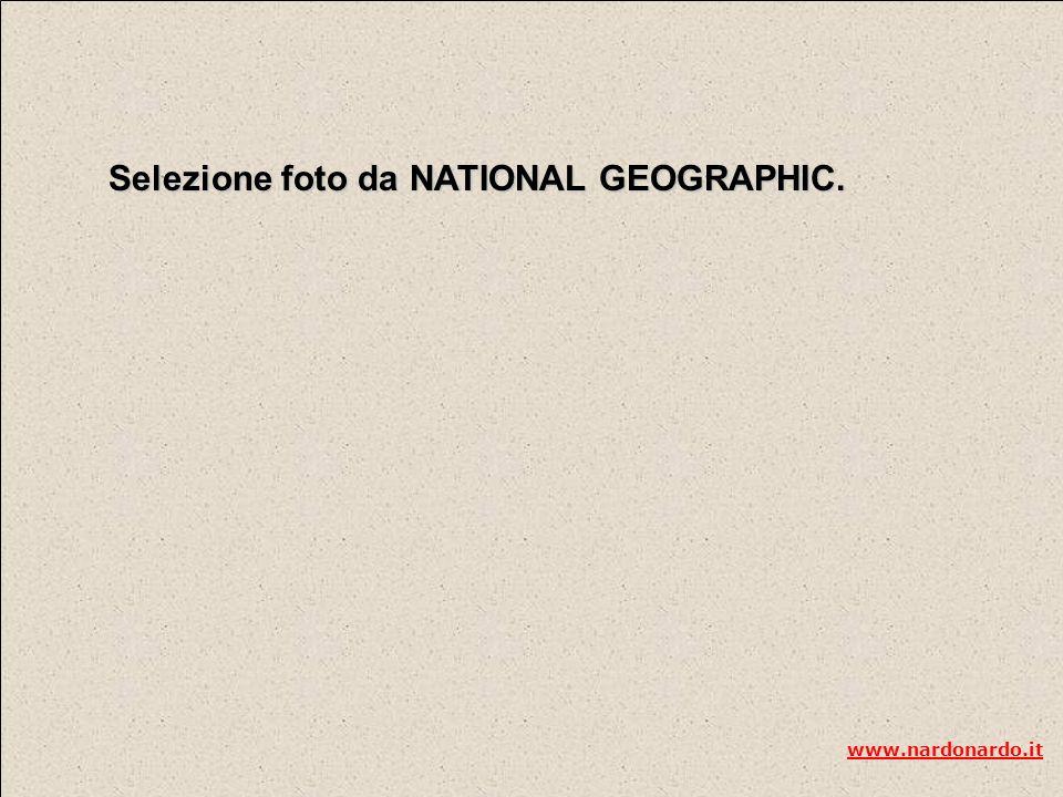 Selezione foto da NATIONAL GEOGRAPHIC. www.nardonardo.it