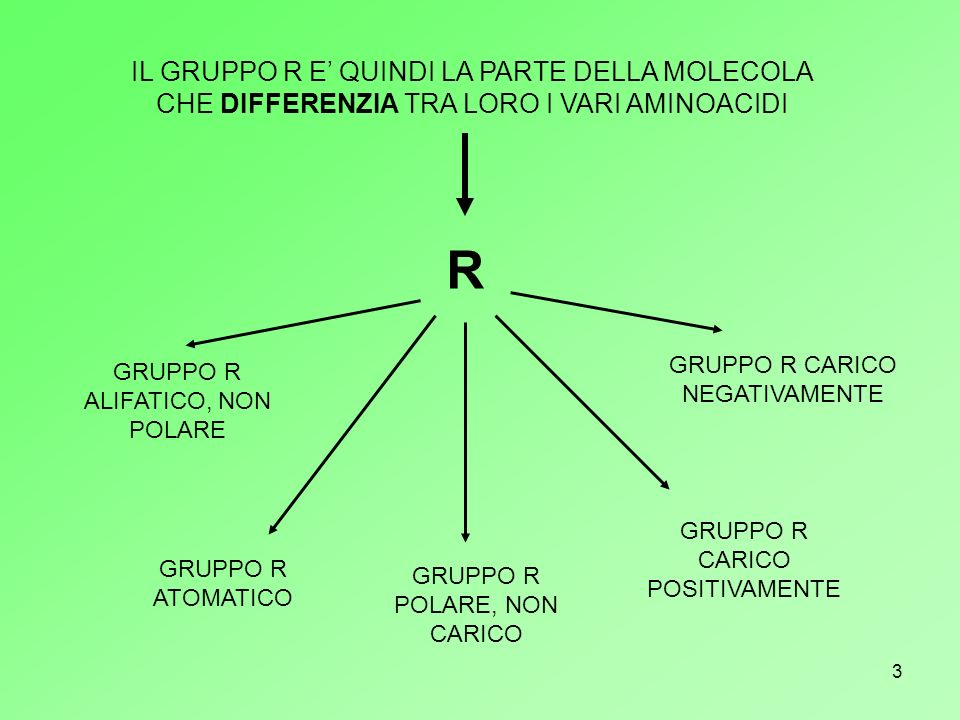 14 PER RICAPITOLARE….