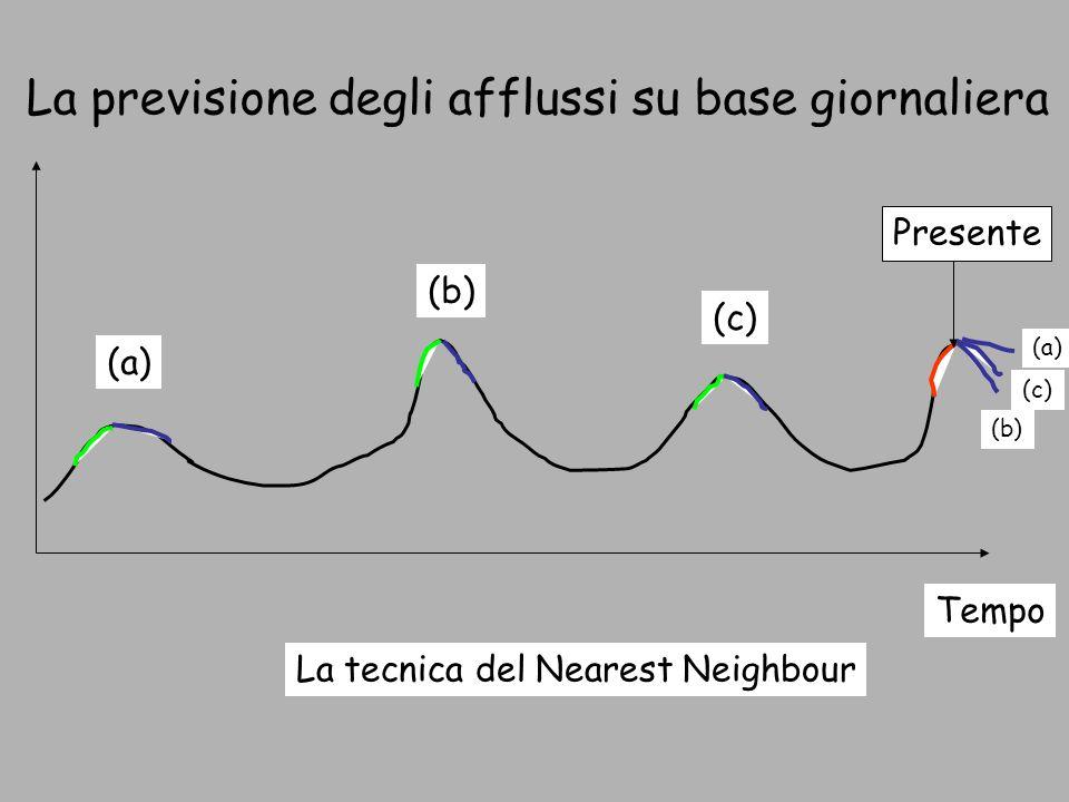 La tecnica del Nearest Neighbour (a) Tempo Presente (a) (b) (c) (b) (c) La previsione degli afflussi su base giornaliera