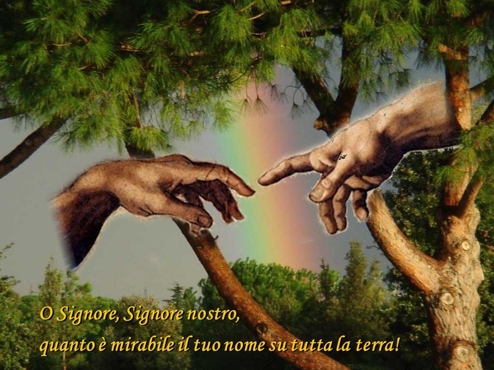 O Signore, Signore nostro, quanto è mirabile il tuo nome su tutta la terra! O Signore, Signore nostro, quanto è mirabile il tuo nome su tutta la terra