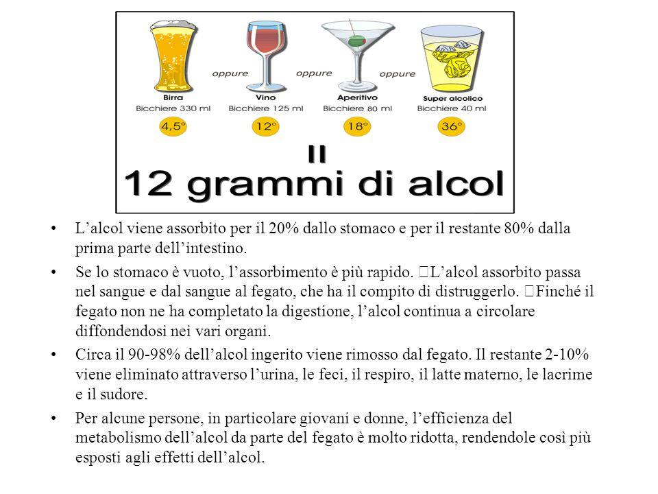 Lalcol viene assorbito per il 20% dallo stomaco e per il restante 80% dalla prima parte dellintestino.