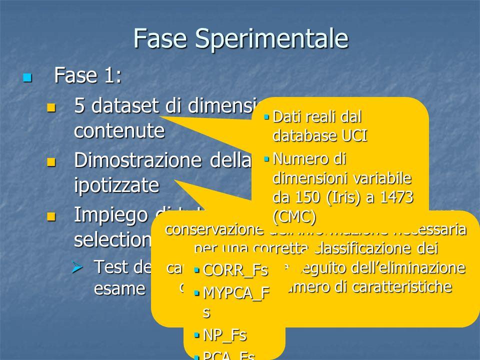 Fase Sperimentale Fase 1: Fase 1: 5 dataset di dimensioni relativamente contenute 5 dataset di dimensioni relativamente contenute Dimostrazione della