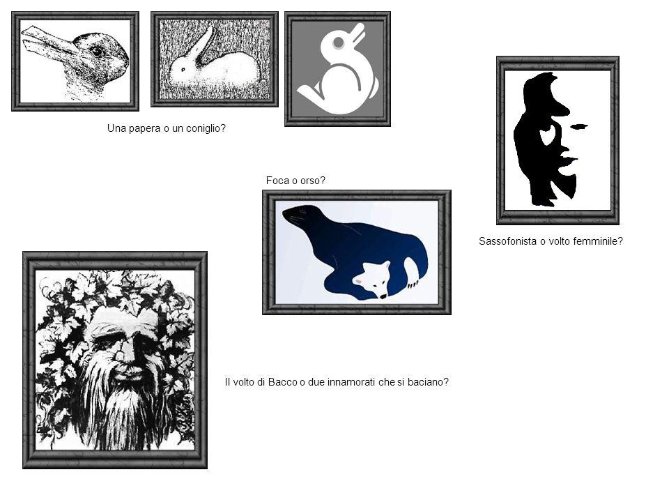 Una papera o un coniglio? Foca o orso? Sassofonista o volto femminile? Il volto di Bacco o due innamorati che si baciano?