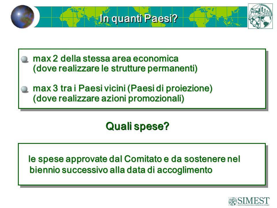 In quanti Paesi? max 2 della stessa area economica (dove realizzare le strutture permanenti) max 3 tra i Paesi vicini (Paesi di proiezione) (dove real