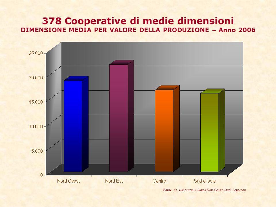 378 Cooperative di medie dimensioni DIMENSIONE MEDIA PER VALORE DELLA PRODUZIONE – Anno 2006 Fonte: Ns.