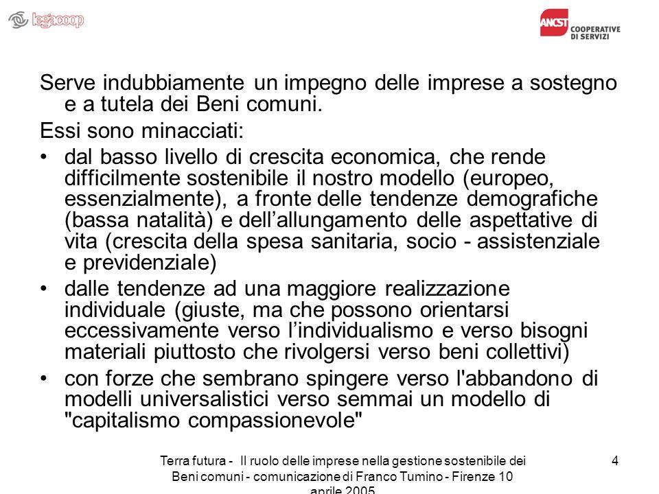 Terra futura - Il ruolo delle imprese nella gestione sostenibile dei Beni comuni - comunicazione di Franco Tumino - Firenze 10 aprile 2005 4 Serve ind
