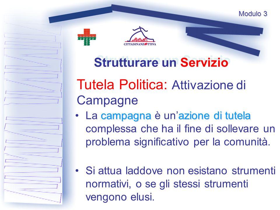 Modulo 3 Tutela Politica: Attivazione di Campagne Strutturare un Servizio campagnaazione di tutela La campagna è unazione di tutela complessa che ha il fine di sollevare un problema significativo per la comunità.