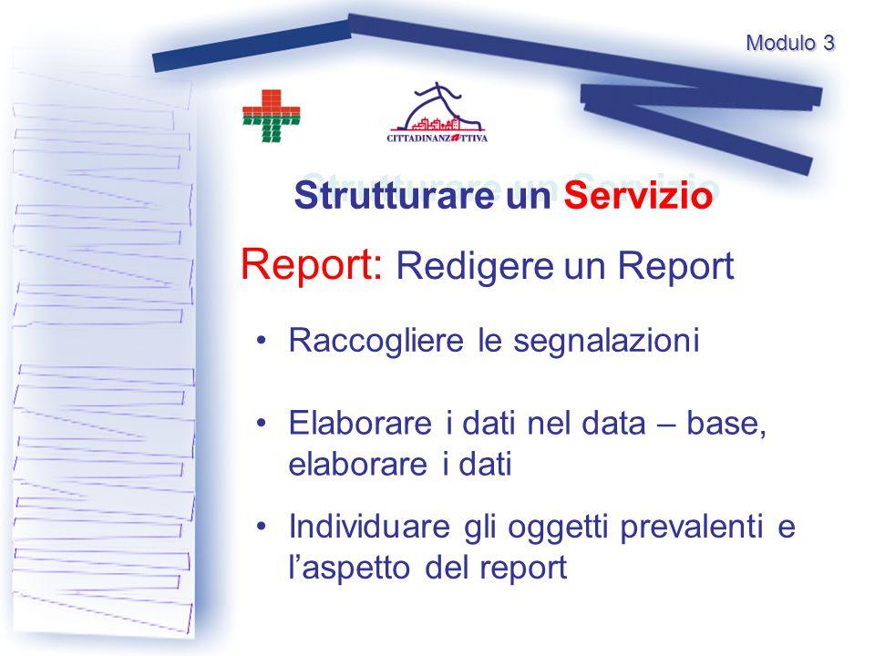 Modulo 3 Report: Redigere un Report Strutturare un Servizio Raccogliere le segnalazioni Individuare gli oggetti prevalenti e laspetto del report Elaborare i dati nel data – base, elaborare i dati