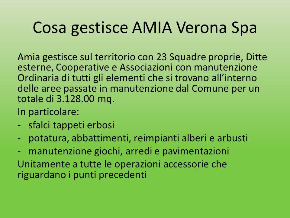 Cosa gestisce AMIA Verona Spa Amia gestisce sul territorio con 23 Squadre proprie, Ditte esterne, Cooperative e Associazioni con manutenzione Ordinari