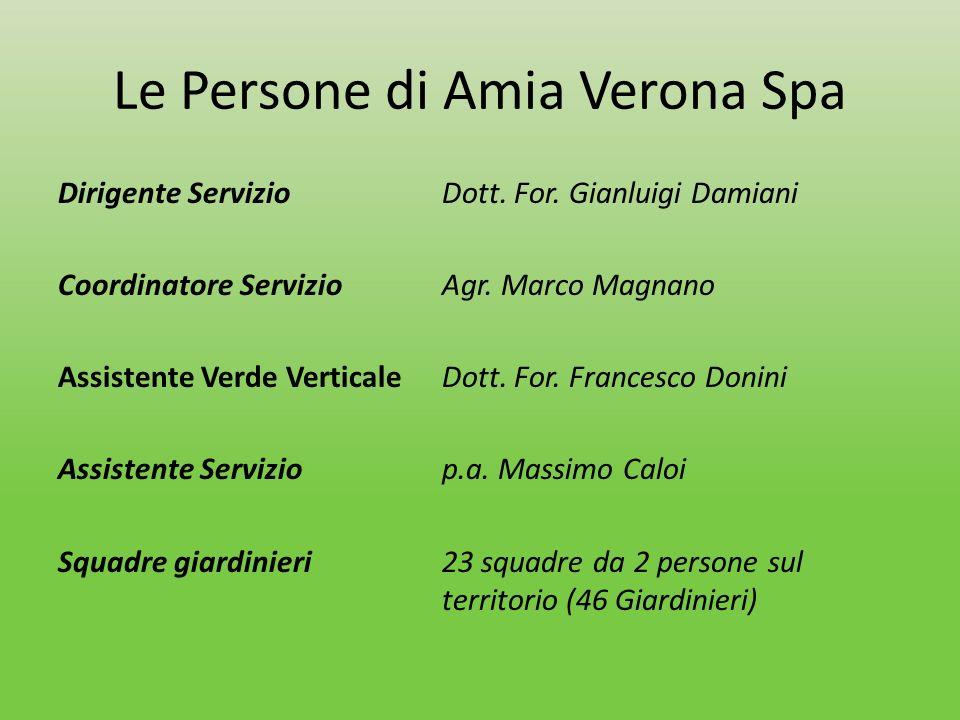 Le Persone di Amia Verona Spa Dirigente ServizioDott. For. Gianluigi Damiani Coordinatore ServizioAgr. Marco Magnano Assistente Verde Verticale Dott.
