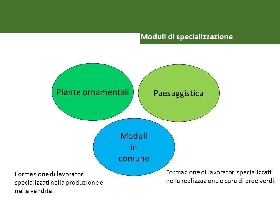 VIELEN DANK Moduli di specializzazione Piante ornamentali Paesaggistica Moduli in comune Formazione di lavoratori specializzati nella produzione e nel