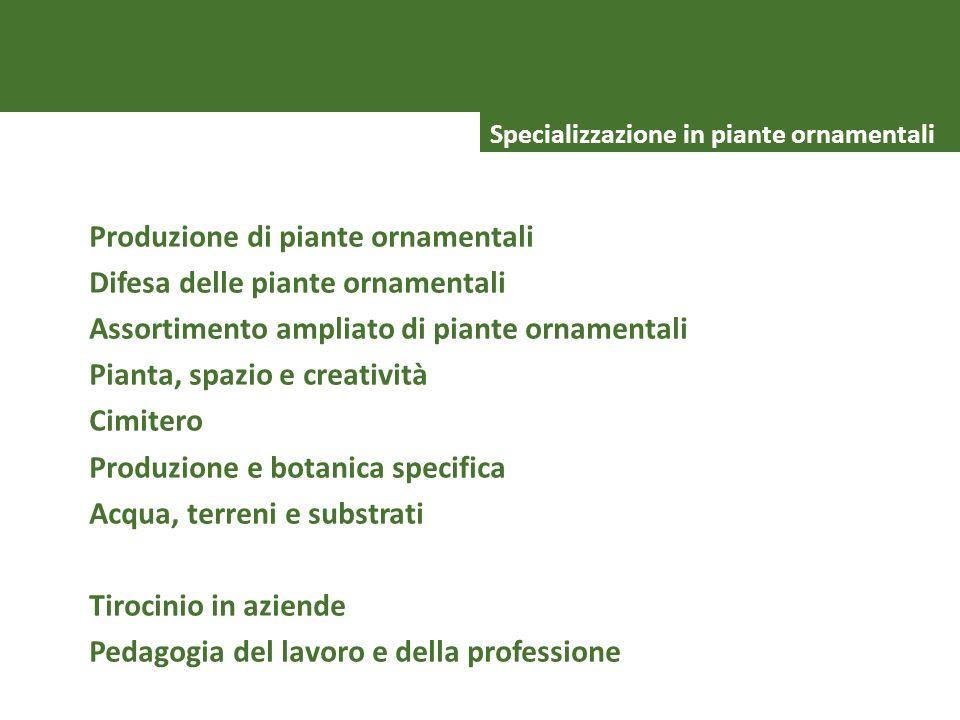 VIELEN DANK Specializzazione in piante ornamentali Produzione di piante ornamentali Difesa delle piante ornamentali Assortimento ampliato di piante or
