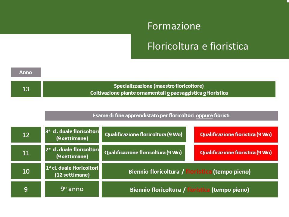 Formazione Floricoltura e fioristica Biennio floricoltura / fioristica (tempo pieno) Esame di fine apprendistato per floricoltori oppure fioristi Spec