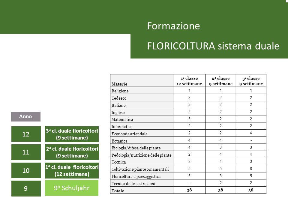 Formazione FLORICOLTURA sistema duale 9 10 11 12 9 o Schuljahr 1 a cl. duale floricoltori (12 settimane) 2 a cl. duale floricoltori (9 settimane) 3 a