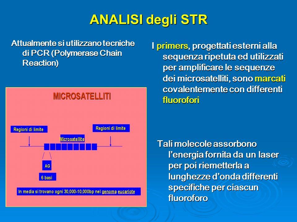 ANALISI degli STR Attualmente si utilizzano tecniche di PCR (Polymerase Chain Reaction) I primers, progettati esterni alla sequenza ripetuta ed utilizzati per amplificare le sequenze dei microsatelliti, sono marcati covalentemente con differenti fluorofori Tali molecole assorbono lenergia fornita da un laser per poi riemetterla a lunghezze donda differenti specifiche per ciascun fluoroforo