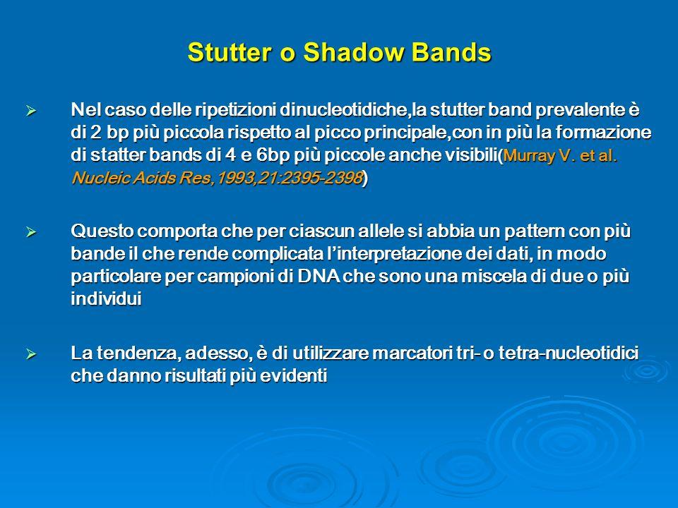 Stutter o Shadow Bands Nel caso delle ripetizioni dinucleotidiche,la stutter band prevalente è di 2 bp più piccola rispetto al picco principale,con in più la formazione di statter bands di 4 e 6bp più piccole anche visibili (Murray V.