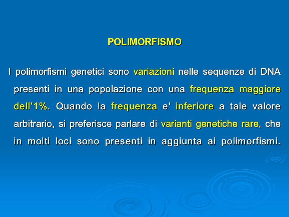 POLIMORFISMO I polimorfismi genetici sono variazioni nelle sequenze di DNA presenti in una popolazione con una frequenza maggiore dell1%.