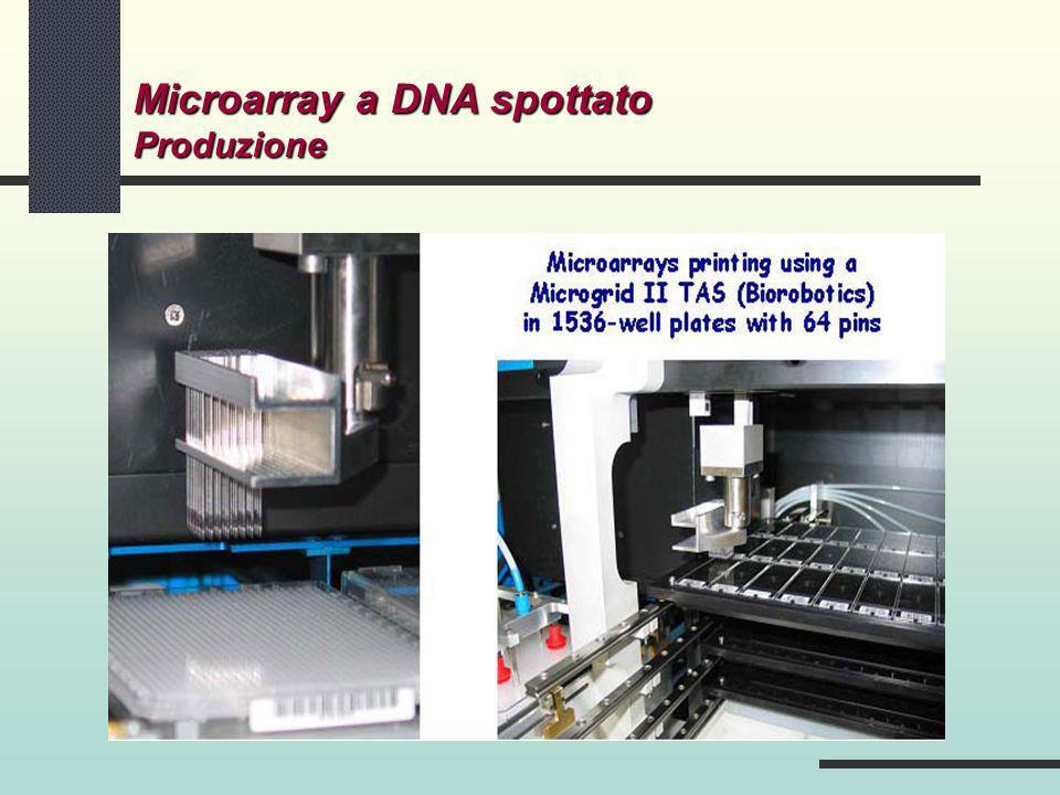 Microarray a DNA spottato Produzione