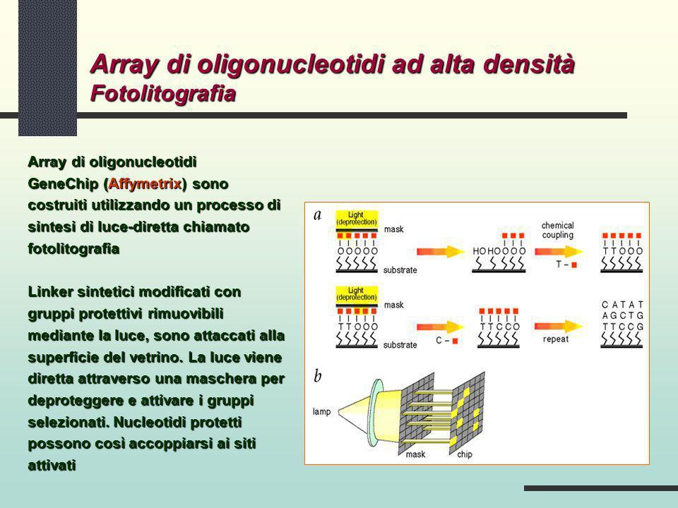 Array di oligonucleotidi ad alta densità Fotolitografia Array di oligonucleotidi GeneChip (Affymetrix) sono costruiti utilizzando un processo di sinte