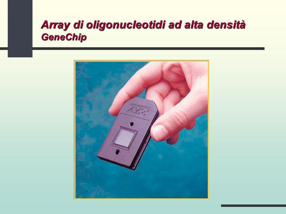 Array di oligonucleotidi ad alta densità GeneChip