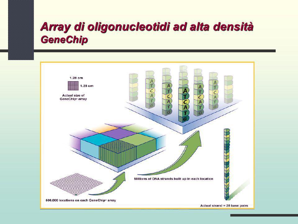 GeneChip