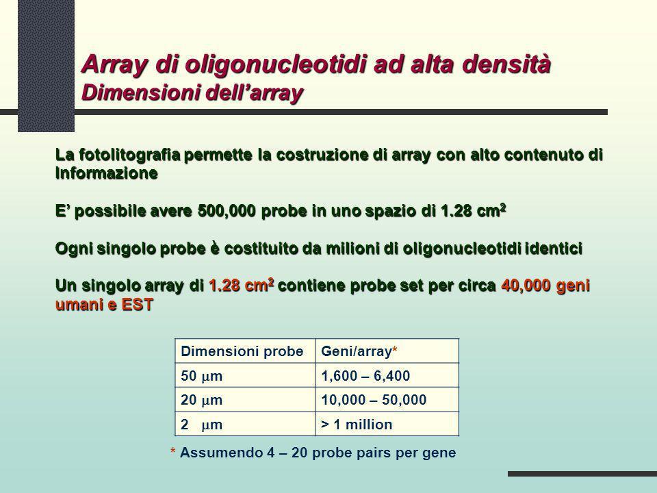 La fotolitografia permette la costruzione di array con alto contenuto di Informazione E possibile avere 500,000 probe in uno spazio di 1.28 cm 2 Ogni