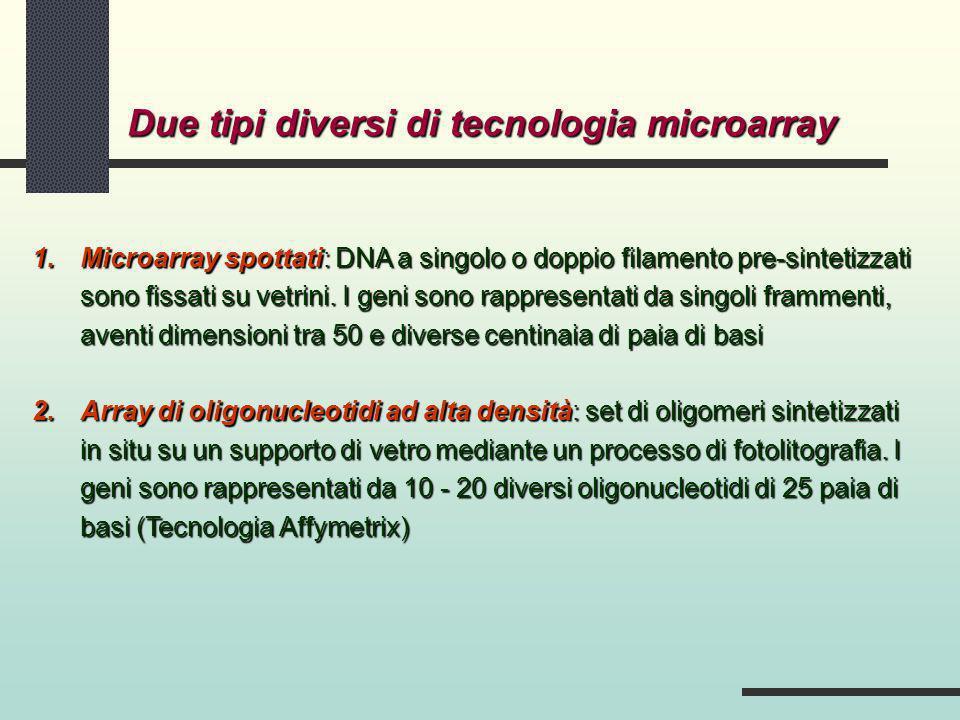 1.Microarray spottati: DNA a singolo o doppio filamento pre-sintetizzati sono fissati su vetrini. I geni sono rappresentati da singoli frammenti, aven