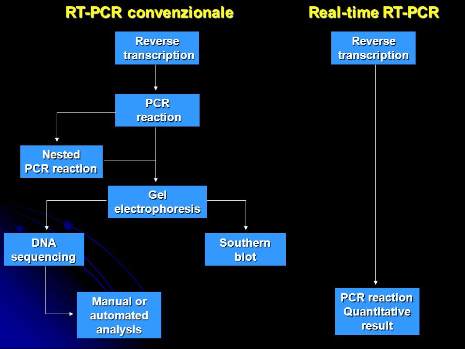 RT-PCR convenzionale Manual or automated analysis Reverse transcription transcription PCR reaction reaction Nested PCR reaction Gelelectrophoresis DNA