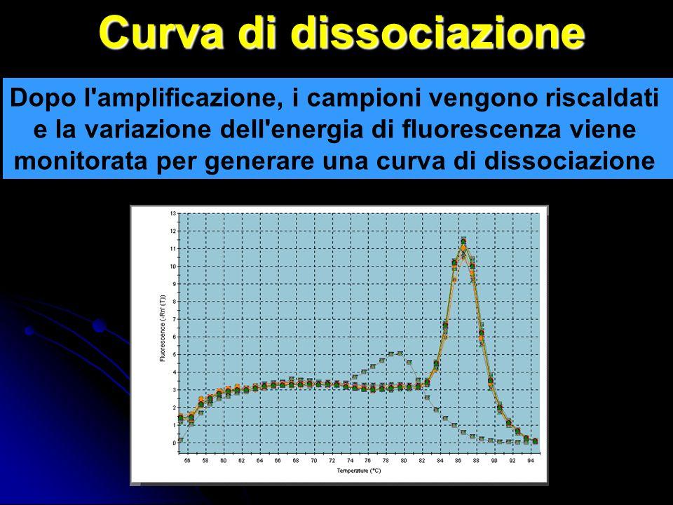 Curva di dissociazione Dopo l amplificazione, i campioni vengono riscaldati e la variazione dell energia di fluorescenza viene monitorata per generare una curva di dissociazione