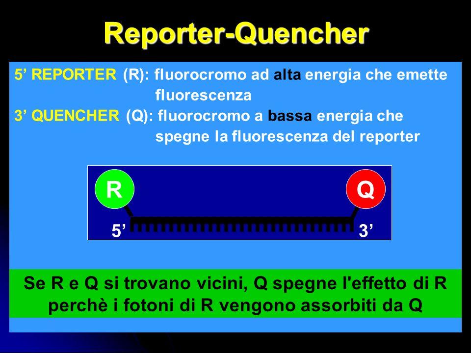 Reporter-Quencher 5 REPORTER (R): fluorocromo ad alta energia che emette fluorescenza 3 QUENCHER (Q): fluorocromo a bassa energia che spegne la fluorescenza del reporter 53 RQ Se R e Q si trovano vicini, Q spegne l effetto di R perchè i fotoni di R vengono assorbiti da Q