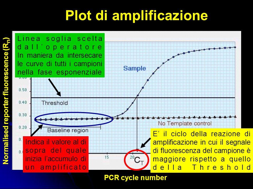 Plot di amplificazione PCR cycle number Normalised reporter fluorescence (R n ) E il ciclo della reazione di amplificazione in cui il segnale di fluorescenza del campione è maggiore rispetto a quello della Threshold Indica il valore al di sopra del quale inizia laccumulo di un amplificato Linea soglia scelta dalloperatore In maniera da intersecare le curve di tutti i campioni nella fase esponenziale