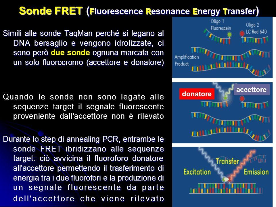 Sonde FRET ( F luorescence R esonance E nergy T ransfer ) Simili alle sonde TaqMan perché si legano al DNA bersaglio e vengono idrolizzate, ci sono però ognuna marcata con un solo fluorocromo (accettore e donatore) Simili alle sonde TaqMan perché si legano al DNA bersaglio e vengono idrolizzate, ci sono però due sonde ognuna marcata con un solo fluorocromo (accettore e donatore) Quando le sonde non sono legate alle sequenze target il segnale fluorescente proveniente dall accettore non è rilevato Durante lo step di annealing PCR, entrambe le sonde FRET ibridizzano alle sequenze target: ciò avvicina il fluoroforo donatore all accettore permettendo il trasferimento di energia tra i due fluorofori e la produzione di un segnale fluorescente da parte dell accettore che viene rilevato donatore accettore