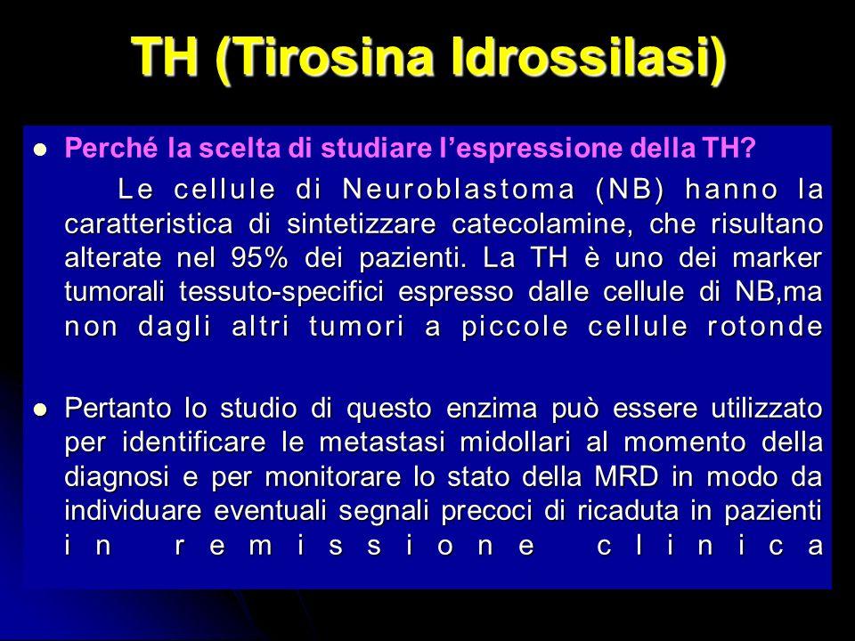 TH (Tirosina Idrossilasi) Perché la scelta di studiare lespressione della TH.