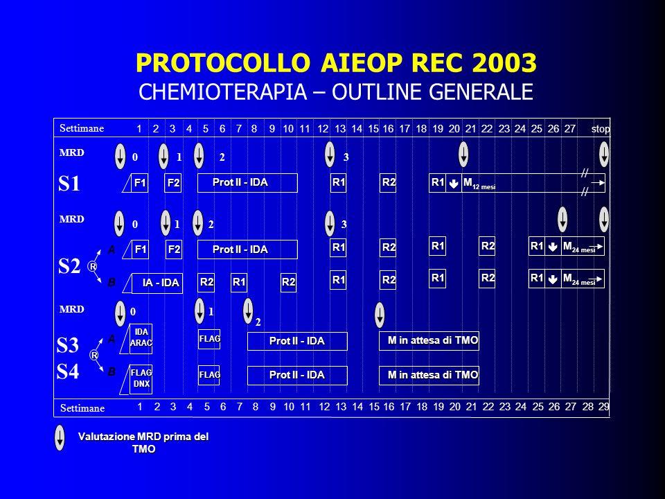 PROTOCOLLO AIEOP REC 2003 CHEMIOTERAPIA – OUTLINE GENERALE Valutazione MRD prima del TMO Settimane stop272625242023222119181716151410131211987654321 1