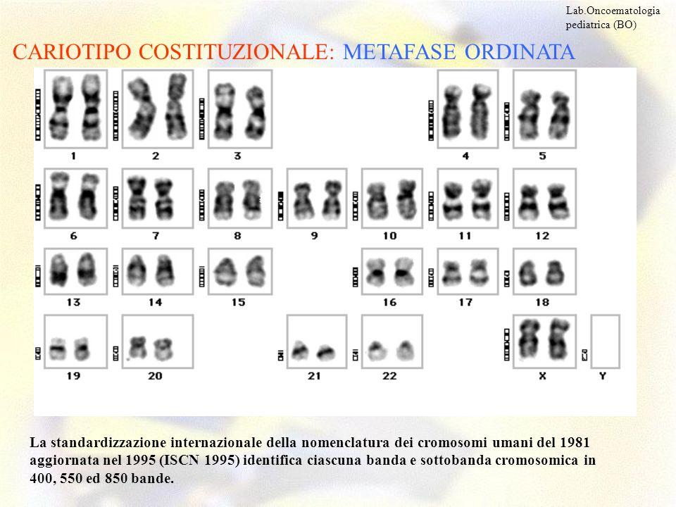 CARIOTIPO COSTITUZIONALE: METAFASE ORDINATA Lab.Oncoematologia pediatrica (BO) La standardizzazione internazionale della nomenclatura dei cromosomi um