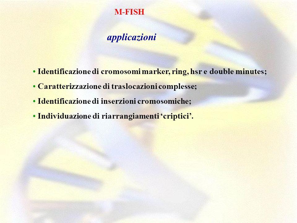 M-FISH applicazioni Identificazione di cromosomi marker, ring, hsr e double minutes; Caratterizzazione di traslocazioni complesse; Identificazione di