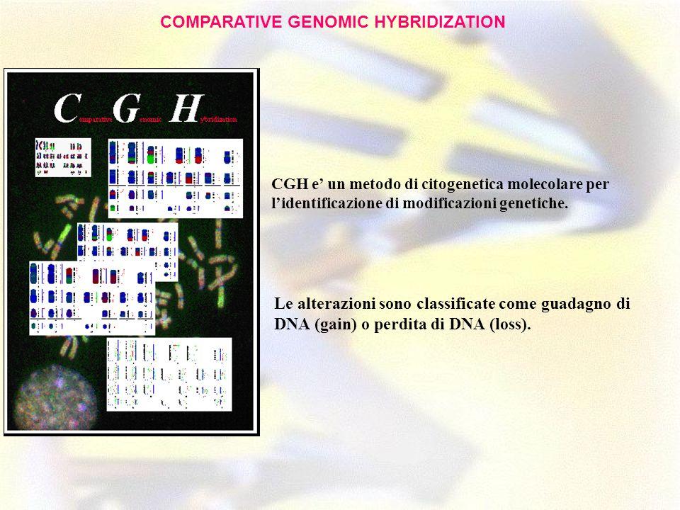 CGH e un metodo di citogenetica molecolare per lidentificazione di modificazioni genetiche. Le alterazioni sono classificate come guadagno di DNA (gai