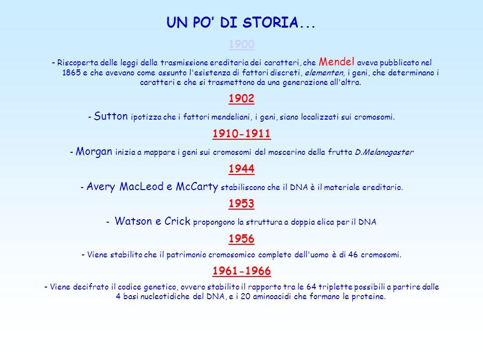 UN PO DI STORIA...