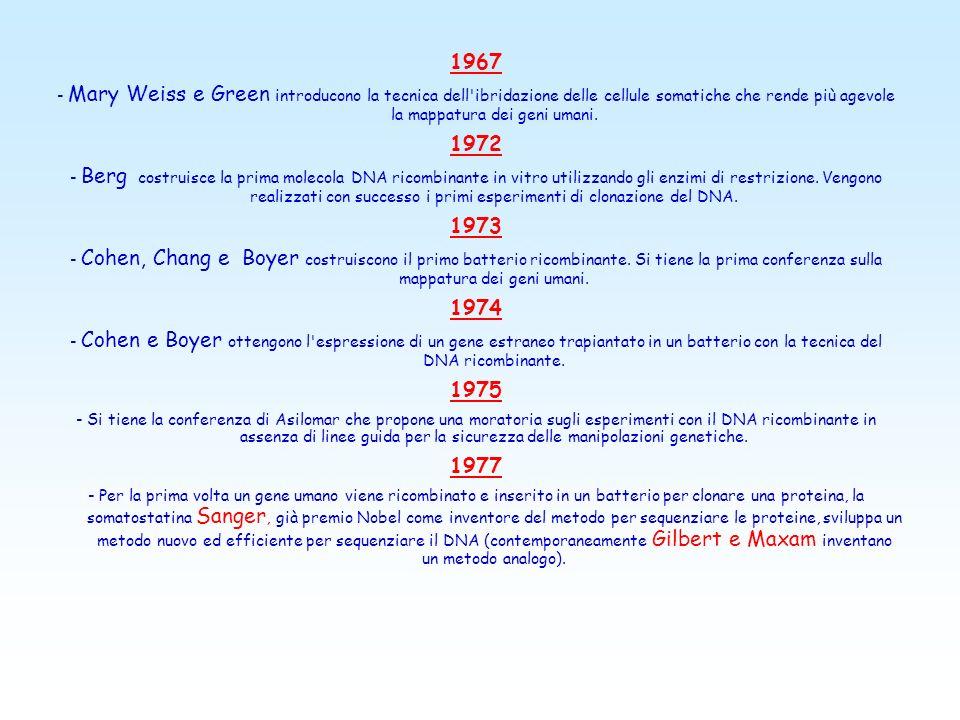 UN PO DI STORIA... 1900 - Riscoperta delle leggi della trasmissione ereditaria dei caratteri, che Mendel aveva pubblicato nel 1865 e che avevano come