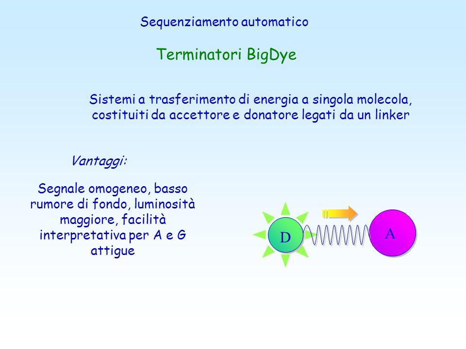 Metodi di Marcatura Marcatura dei Primers primers progettati con tag colorati a: Fluorescenza UV Fluorescenza IRminore Background maggiore Sensibilità