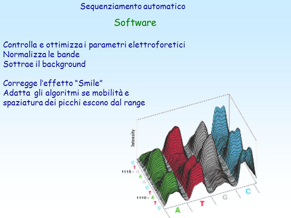 Sistemi di Rilevamento Camera CCD ( Charge - Coupled Device) Altissima risoluzioneImmagine Elettroferogramma Sequenza in pochi minuti Assenza di Filtr