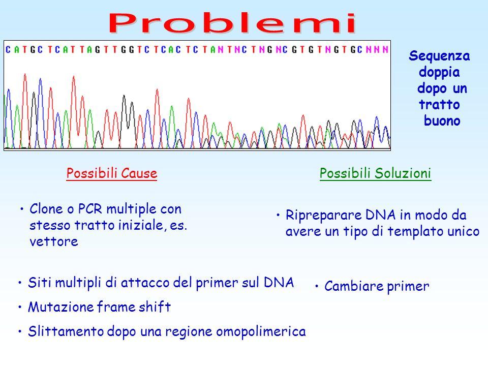 Possibili CausePossibili Soluzioni Perdita di risoluzione precoce per cui i picchi sono sempre meno definiti Il DNA presenta contaminazioni che inibis