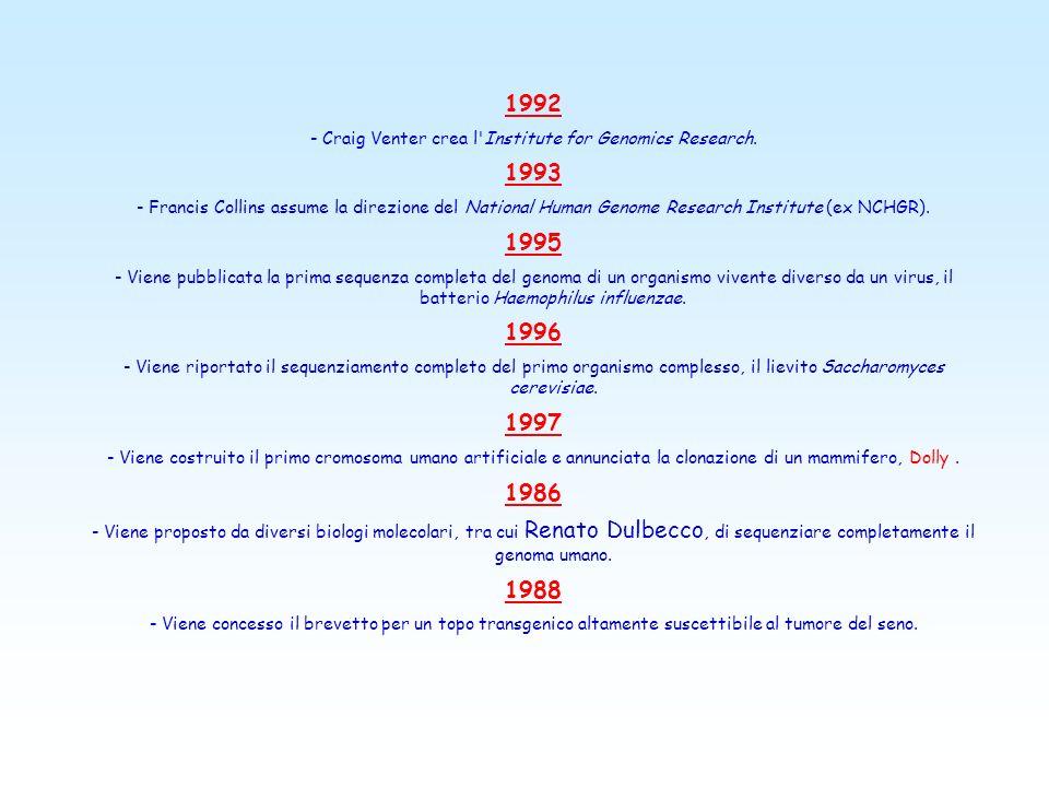 1978 - Boyer costruisce una versione sintetica del gene dell'insulina e lo inserisce in un batterio. La Genentech, fondata nel 1976 dallo stesso Boyer