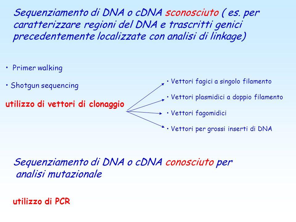 Sequenziamento automatico: Applicazioni in ambito biomedico