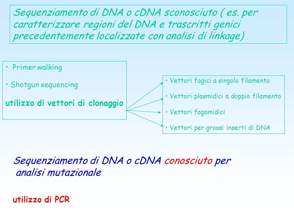 Perché sequenziare anche organismi diversi da Homo Sapiens? Ad esempio per confrontare le sequenze altamente conservate, è più probabile che codifichi