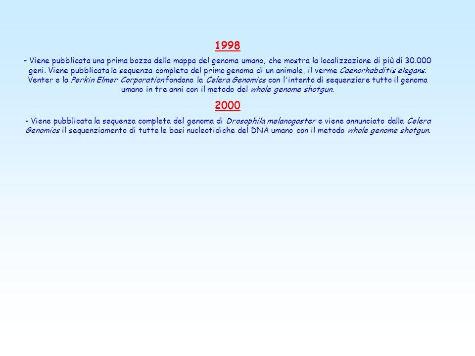 1998 - Viene pubblicata una prima bozza della mappa del genoma umano, che mostra la localizzazione di più di 30.000 geni.