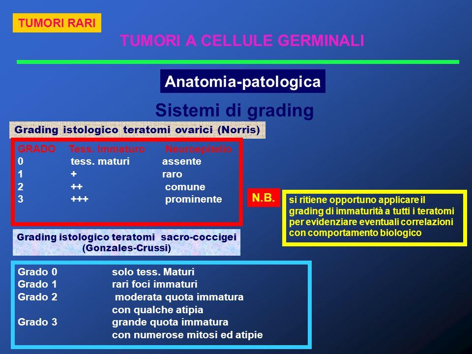 TUMORI RARI TUMORI A CELLULE GERMINALI Anatomia-patologica Sistemi di grading Grading istologico teratomi ovarici (Norris) Grading istologico teratomi