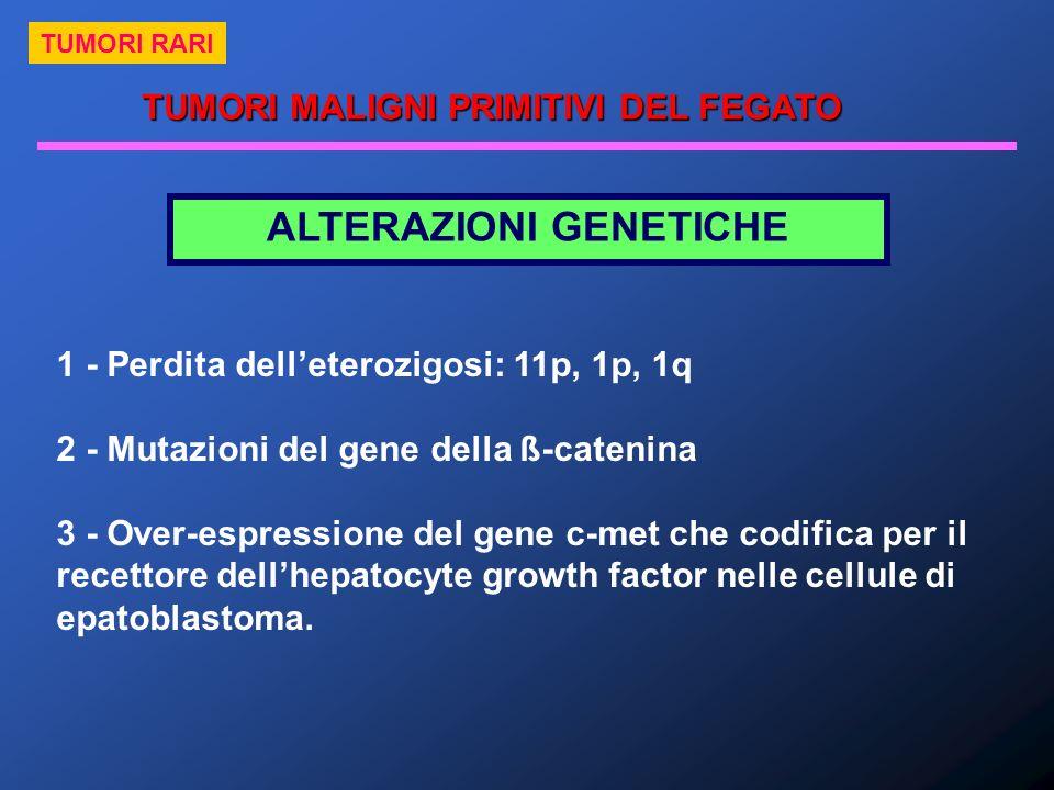 ALTERAZIONI GENETICHE 1 - Perdita delleterozigosi: 11p, 1p, 1q 2 - Mutazioni del gene della ß-catenina 3 - Over-espressione del gene c-met che codific