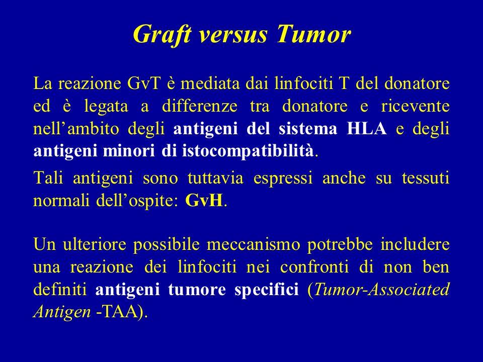 Graft versus Tumor La reazione GvT è mediata dai linfociti T del donatore ed è legata a differenze tra donatore e ricevente nellambito degli antigeni del sistema HLA e degli antigeni minori di istocompatibilità.