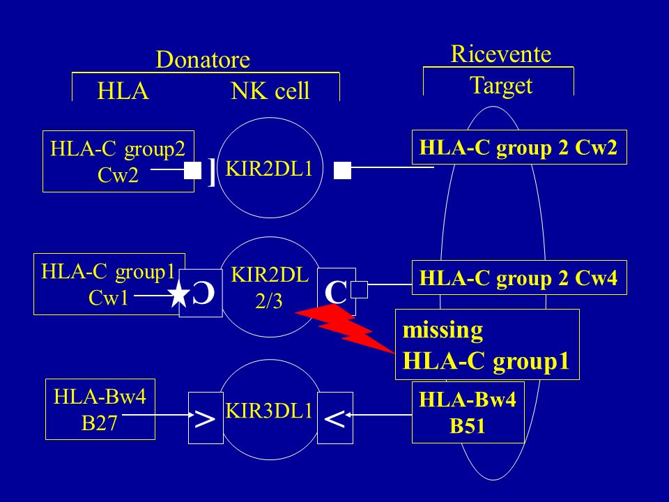 [ KIR2DL1 KIR3DL1 KIR2DL 2/3 < C HLA-C group 2 Cw2 HLA-C group 2 Cw4 HLA-Bw4 B51 HLA-C group2 Cw2 HLA-C group1 Cw1 HLA-Bw4 B27 > C missing HLA-C group